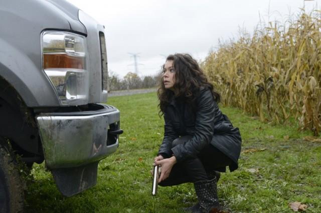 Tatiana Maslany as Sarah
